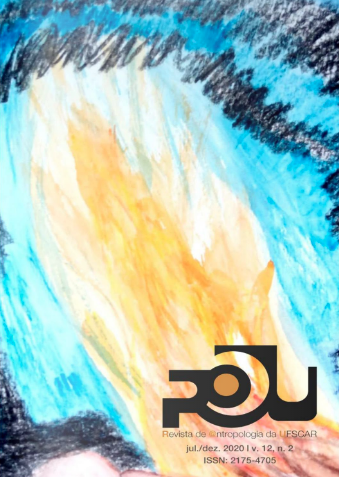 Visualizar v. 12 n. 2 (2020): Volume 12, Número 2, julho – dezembro de 2020